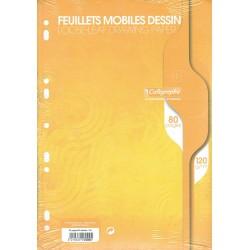 Feuilles de Dessin Calligraphe 80 pages - A4 - 120g - Perforées